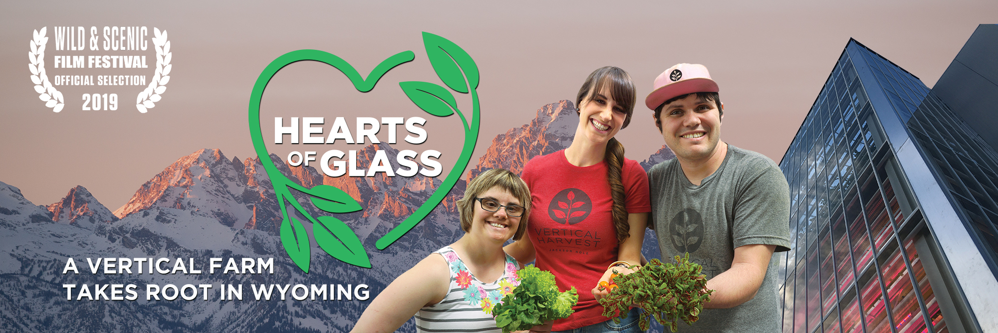 Donate to Hearts of Glass Film